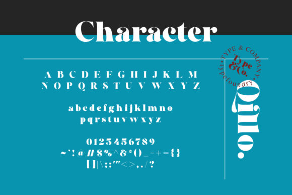 Print on Demand: Qillo Serif Font By Type and Co. - Image 16