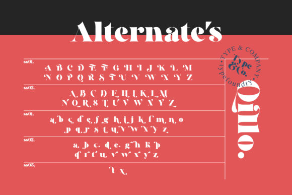 Print on Demand: Qillo Serif Font By Type and Co. - Image 17