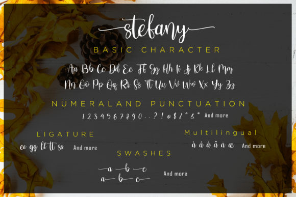 Print on Demand: Stefany Script & Handwritten Font By fiqiart09 - Image 5