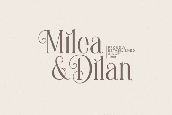 Print on Demand: Brilliantly Serif Font By letterhend - Image 11