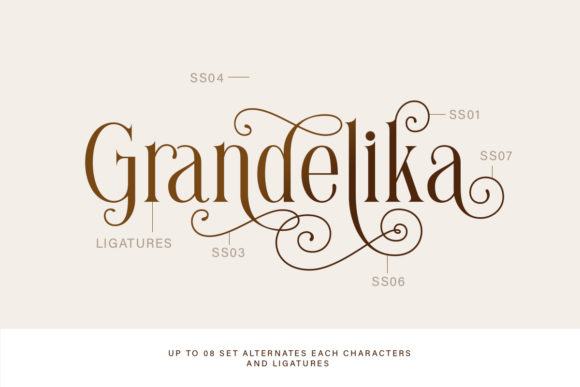 Print on Demand: Brilliantly Serif Font By letterhend - Image 3