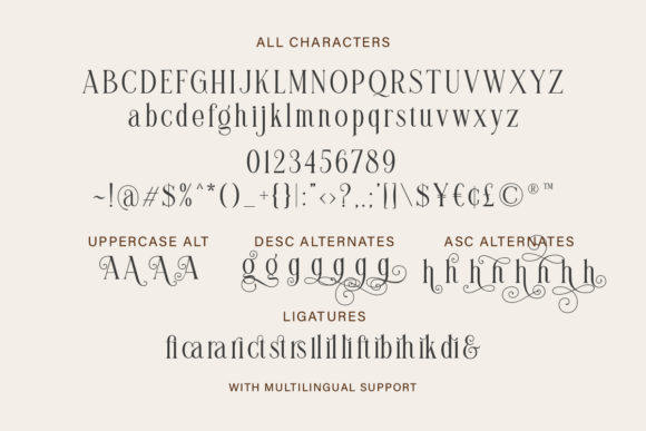 Print on Demand: Brilliantly Serif Font By letterhend - Image 9