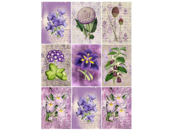 Download Free 9 Vintage Atc Cards Ephemera Tags Graphic By Scrapbook Attic for Cricut Explore, Silhouette and other cutting machines.