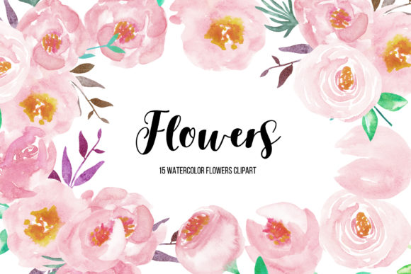 Watercolor Flower Peonies Clipart Graphic Illustrations By BonaDesigns