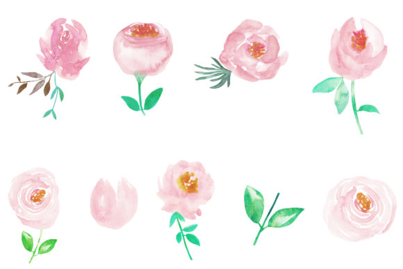 Watercolor Flower Peonies Clipart Graphic Illustrations By BonaDesigns - Image 2