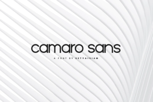 Print on Demand: Camaro Sans Serif Font By setyaisiam