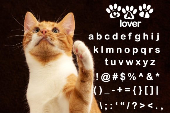 Download Free Cat Lover Font By Ktwop Creative Fabrica for Cricut Explore, Silhouette and other cutting machines.
