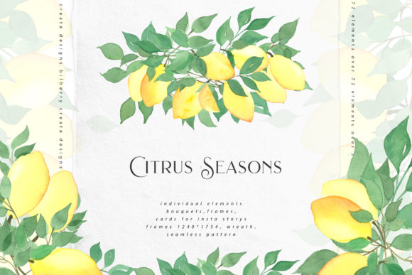 Citrus Seasons Collection Graphic Illustrations By BilberryCreate