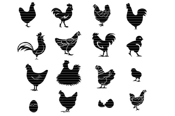 Print on Demand: Farm Chicken Bundle Graphic Crafts By MeshaArts