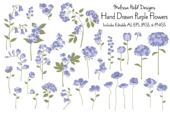 Hand Drawn Purple Flowers Graphic Illustrations By Melissa Held Designs