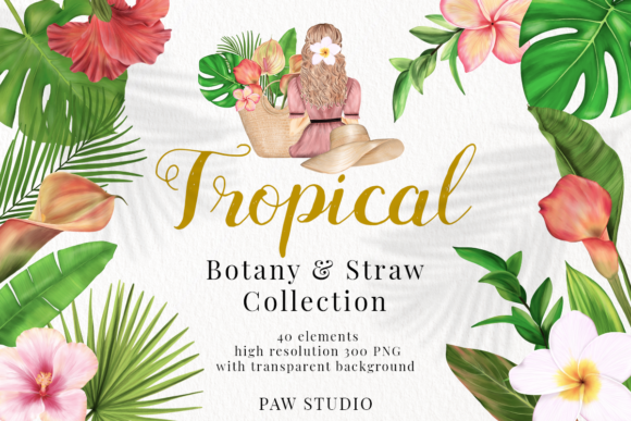 Print on Demand: Tropical Illustrations of Flowers, Leave Graphic Illustrations By PawStudio