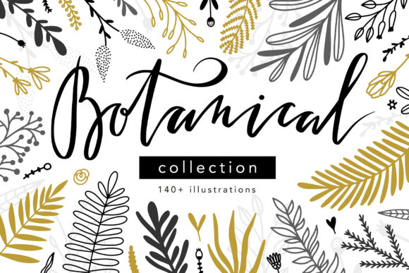 Botanical Collection Graphic Illustrations By redchocolate