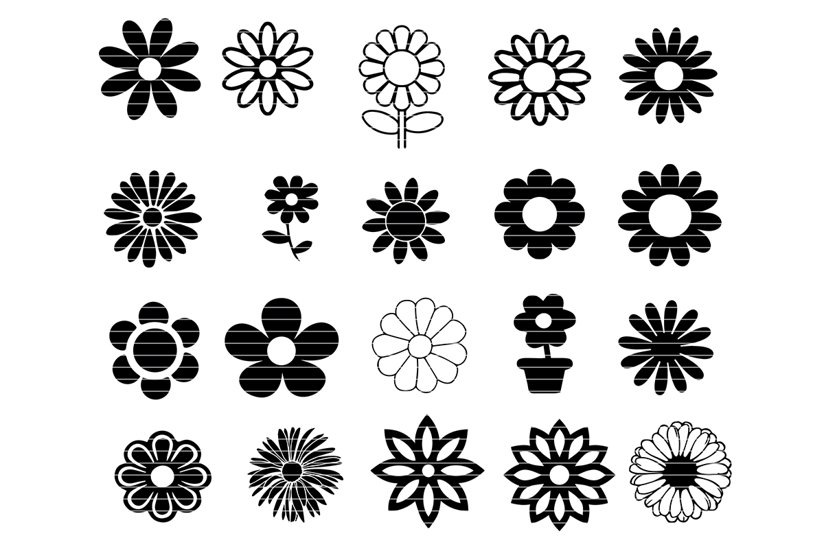 Download Free Daisy Flower Bundle Graphic By Meshaarts Creative Fabrica for Cricut Explore, Silhouette and other cutting machines.
