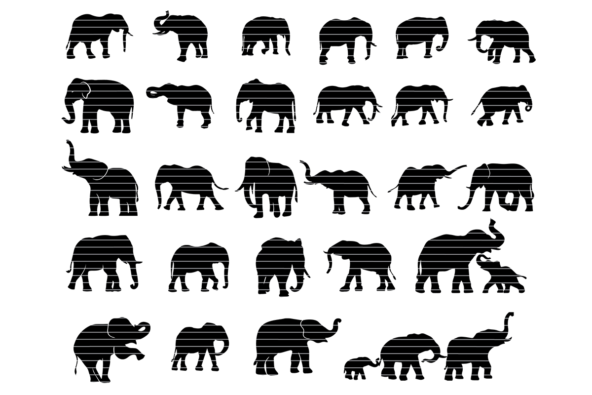 Download Free Elephant Silhouette Clip Art Bundle Graphic By Meshaarts for Cricut Explore, Silhouette and other cutting machines.