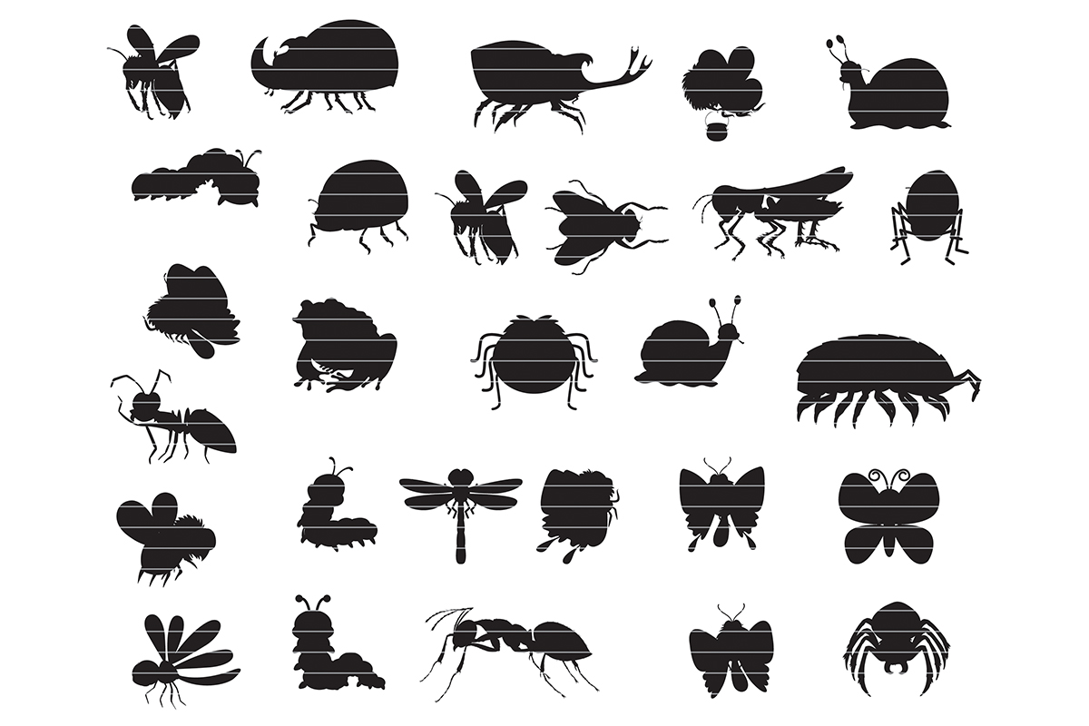 Download Free Insect Silhouette Clip Art Bundle Graphic By Meshaarts for Cricut Explore, Silhouette and other cutting machines.