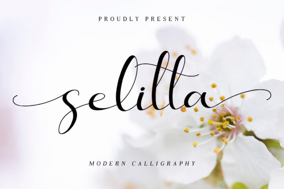 Print on Demand: Selitta Script & Handwritten Font By AEN Creative Studio