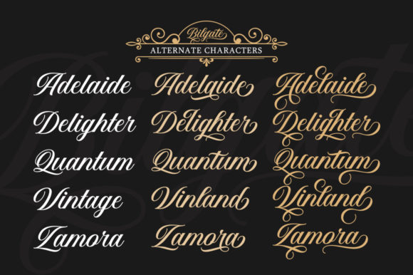 Print on Demand: Bilgate Script & Handwritten Font By Lettersams - Image 5
