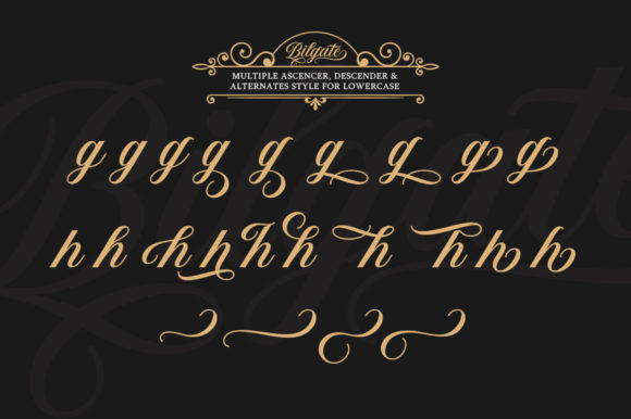 Print on Demand: Bilgate Script & Handwritten Font By Lettersams - Image 7