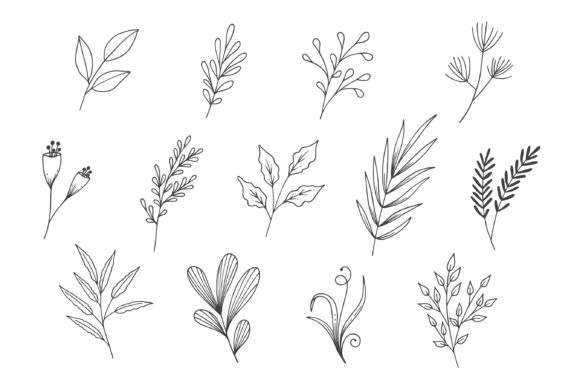 Natural Leaves Line Art Collection Graphic Illustrations By Aghadhia Studio