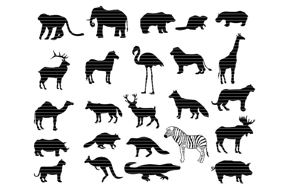 Download Free Zoo Animals Silhouette Bundle Graphic By Meshaarts Creative for Cricut Explore, Silhouette and other cutting machines.