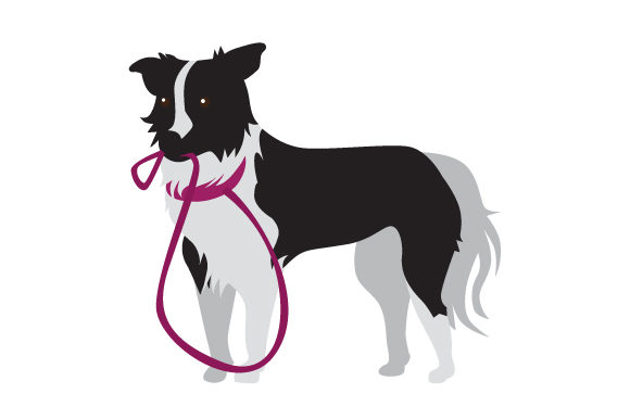 Border Collie with Leash in Mouth Dogs Craft Cut File By Creative Fabrica Crafts