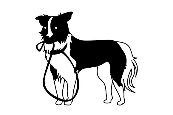 Border Collie with Leash in Mouth Dogs Craft Cut File By Creative Fabrica Crafts - Image 2