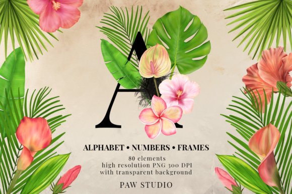 Print on Demand: Tropical Graphic Letters and Floral Frames Graphic Illustrations By PawStudio - Image 1