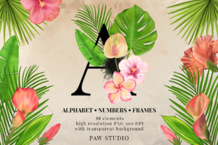 Download Free Tropical Graphic Letters And Floral Frames Graphic By Pawstudio Creative Fabrica for Cricut Explore, Silhouette and other cutting machines.