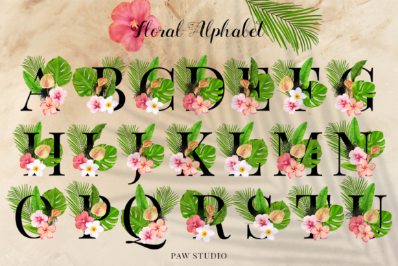 Print on Demand: Tropical Graphic Letters and Floral Frames Graphic Illustrations By PawStudio - Image 2