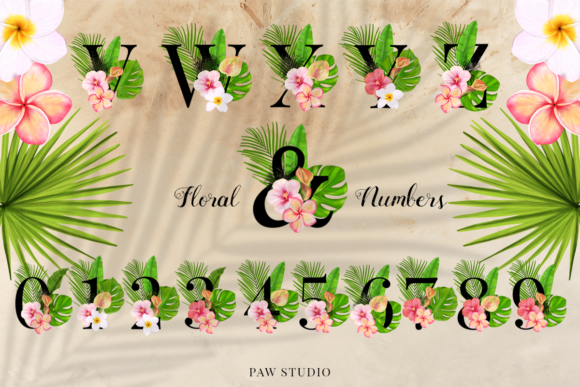 Print on Demand: Tropical Graphic Letters and Floral Frames Graphic Illustrations By PawStudio - Image 3