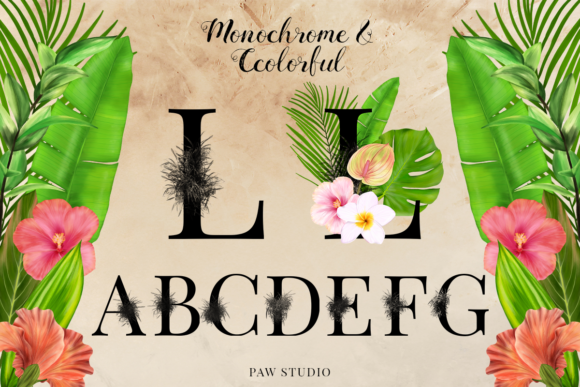Print on Demand: Tropical Graphic Letters and Floral Frames Graphic Illustrations By PawStudio - Image 4