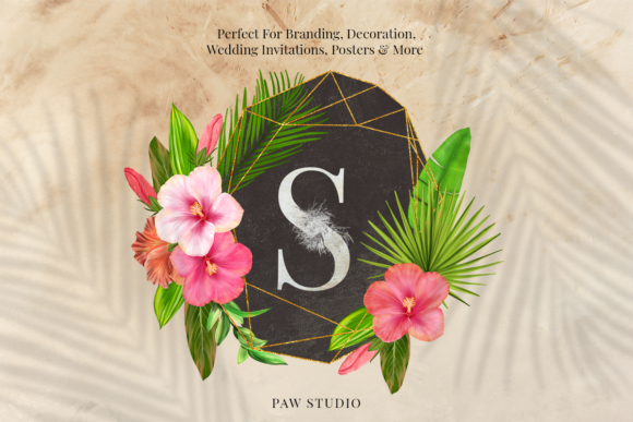 Print on Demand: Tropical Graphic Letters and Floral Frames Graphic Illustrations By PawStudio - Image 5