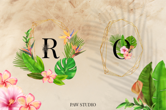 Print on Demand: Tropical Graphic Letters and Floral Frames Graphic Illustrations By PawStudio - Image 6
