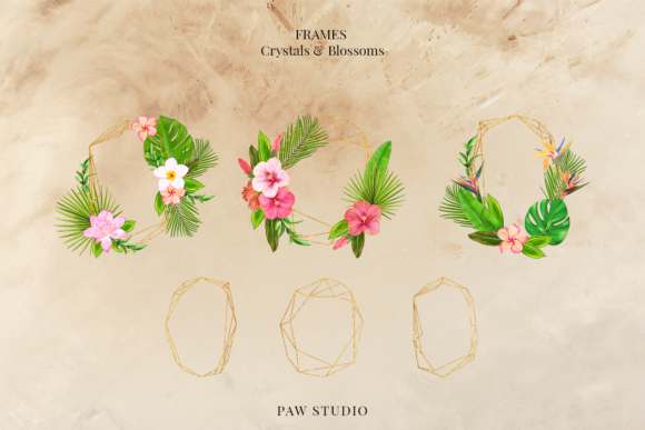 Print on Demand: Tropical Graphic Letters and Floral Frames Graphic Illustrations By PawStudio - Image 7