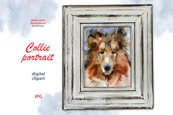 Watercolor Collie Portrait Graphic Illustrations By NataliMyaStore