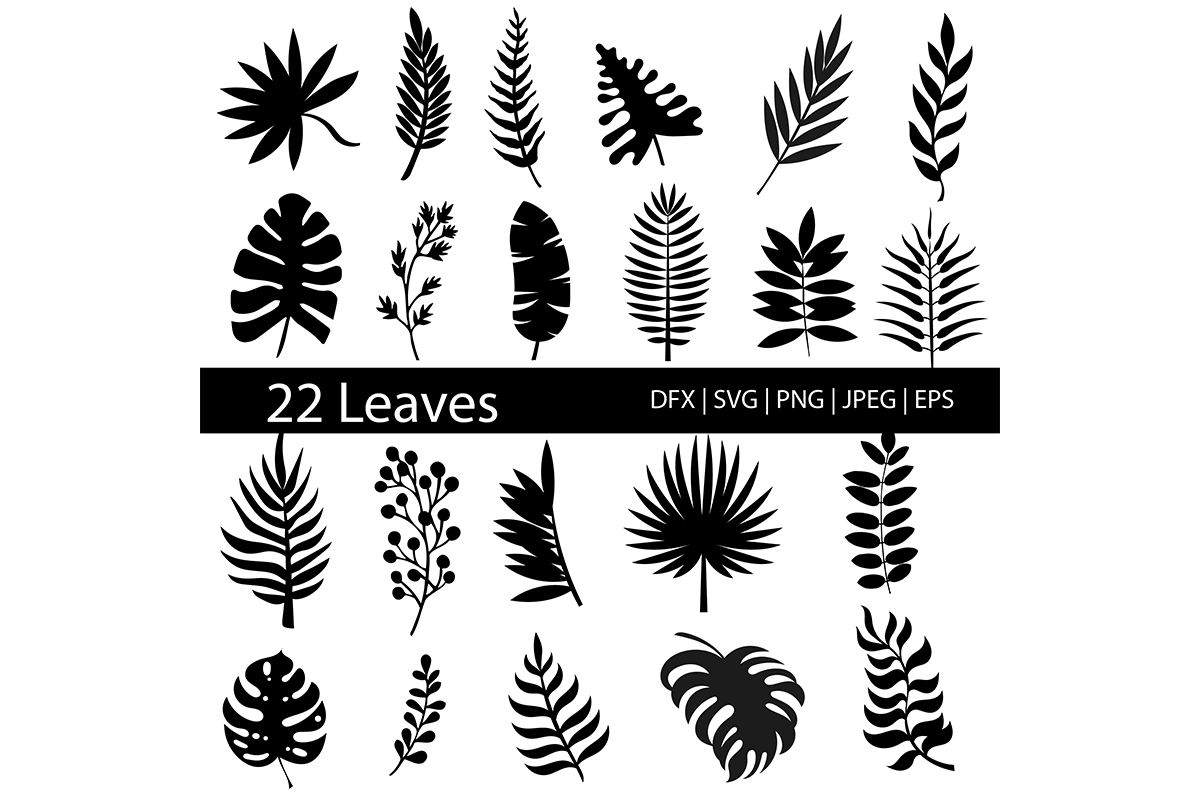 Download Free Tropical Leaves Silhouette Clip Art Graphic By Meshaarts for Cricut Explore, Silhouette and other cutting machines.