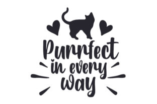 Purrfect in Every Way Cats Craft Cut File By Creative Fabrica Crafts