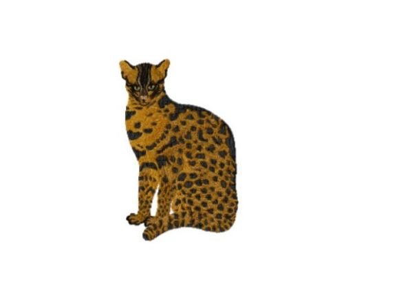 Fishing Cat Cats Embroidery Design By Red Moon Gardens