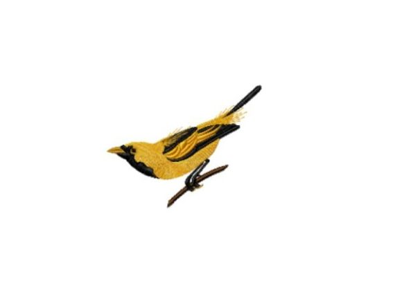 Golden Haired Flycatcher Birds Embroidery Design By Red Moon Gardens