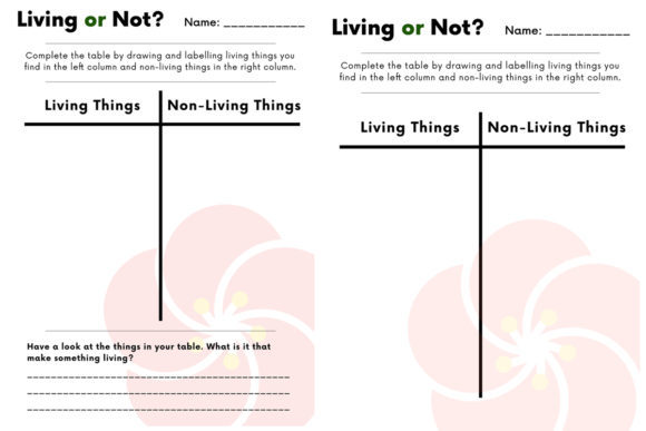 Living Things Outdoor Activity Graphic K By Saving The Teachers