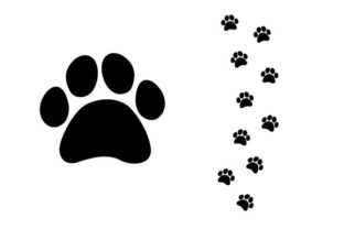 Print on Demand: Paw Graphic Graphic Crafts By doridodesign