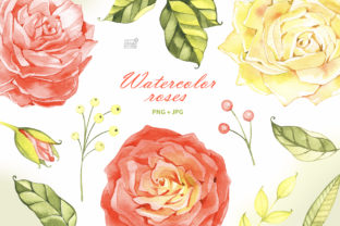 Watercolor Roses Cliparts Graphic Illustrations By NataliMyaStore