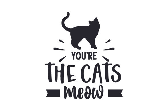 Download Free You Re The Cats Meow Svg Cut File By Creative Fabrica Crafts for Cricut Explore, Silhouette and other cutting machines.
