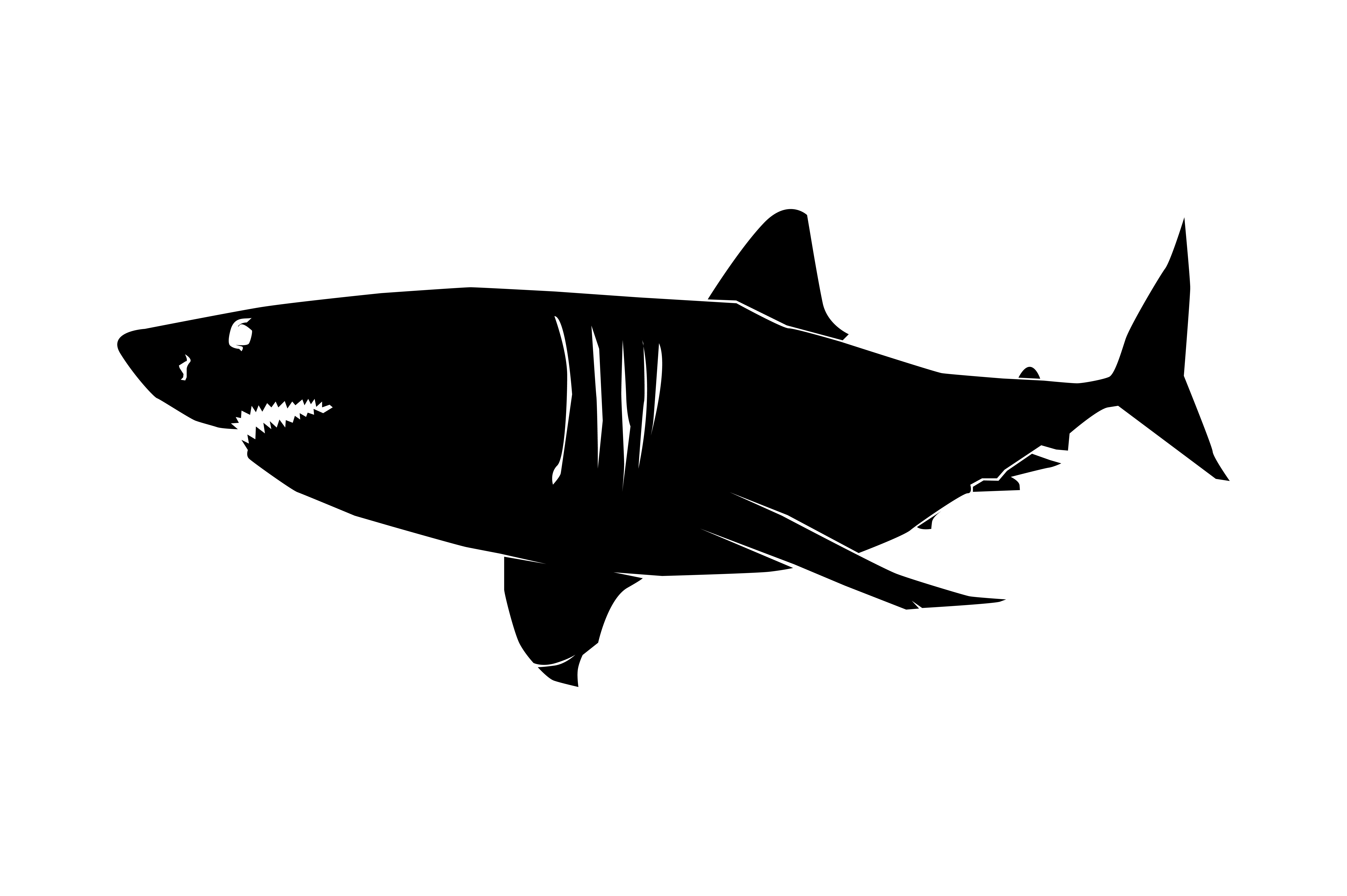 Download Free Great White Shark Silhouette Graphic By Rfg Creative Fabrica for Cricut Explore, Silhouette and other cutting machines.