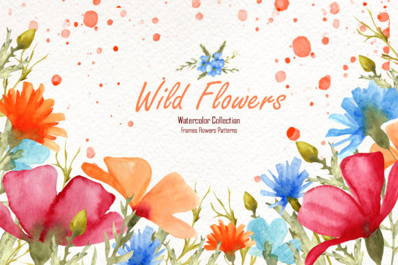Print on Demand: Watercolor Wild Flowers Graphic Illustrations By tanatadesign