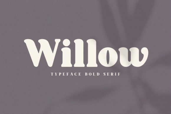 Print on Demand: Willow Serif Font By Hanzel Studio