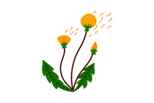 Dandelion Nature & Outdoors Craft Cut File By Creative Fabrica Crafts 1