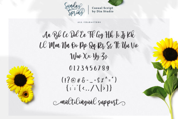 Print on Demand: Sunday Spring Script & Handwritten Font By Din Studio - Image 9