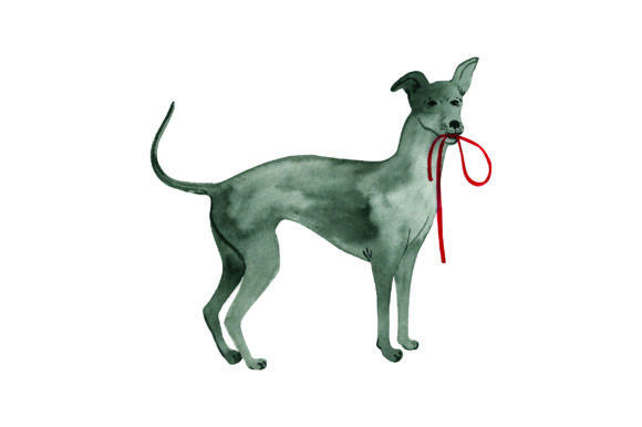 Greyhound with Leash in Mouth Dogs Craft Cut File By Creative Fabrica Crafts