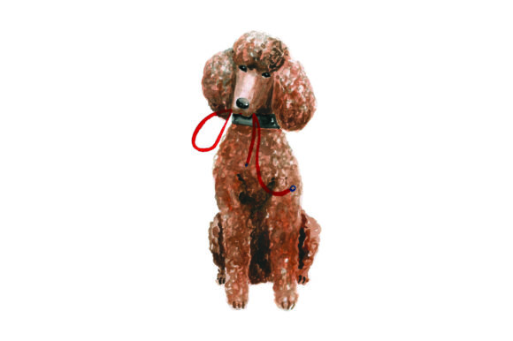 Poodle with Leash in Mouth Dogs Craft Cut File By Creative Fabrica Crafts